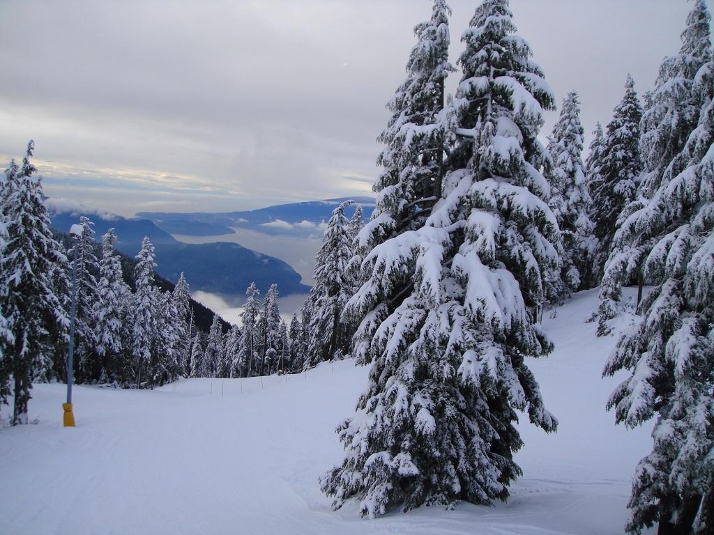 雪景与海景的交融.jpg