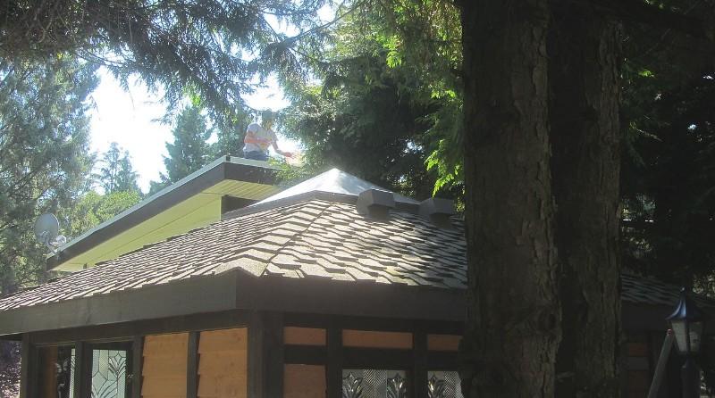 他在屋顶上整理什么