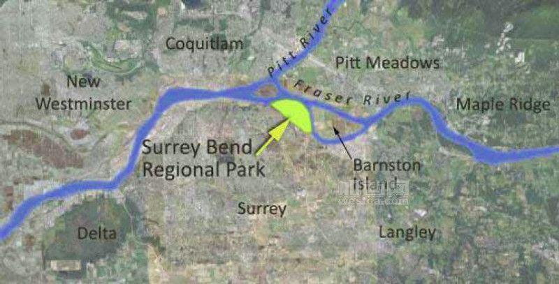 Surrey Bend 1.JPG