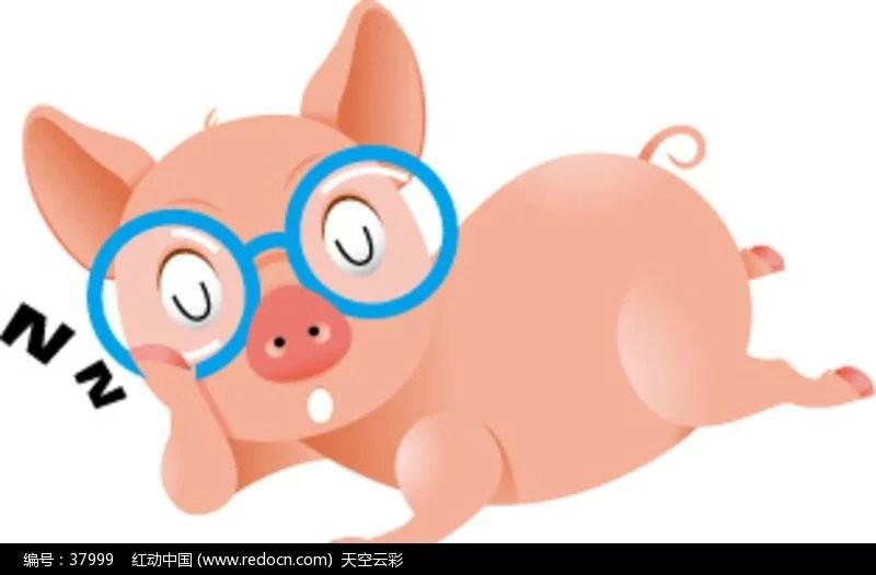 睡猪.jpg