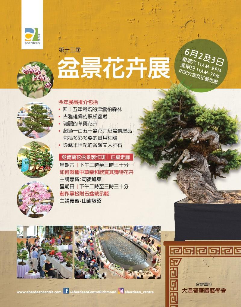 2018_bonsai_cn.jpg