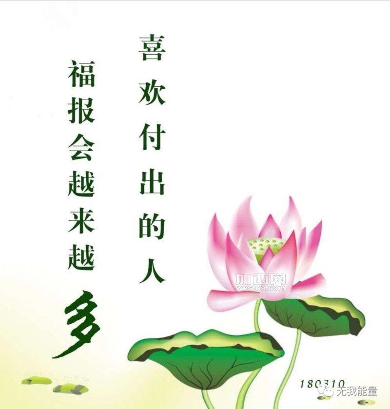 IMG_20200512_095916.jpg