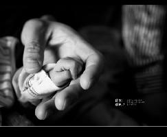 宝宝的小手在爸爸的手心中